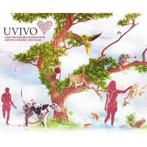 Компания Uvivo – спонсор выставок «Чемпионат России 2013» и «Континент Союз 2013»
