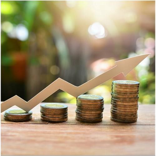 Выбор направлений инвестирования компании в современных условиях