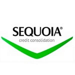 «Секвойя Кредит Консолидейшн» об ограничении специальных прав должников