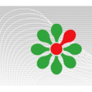 Диагностическое тестирование в Академии профессионального образования поможет успешно сдать ЕГЭ-2013