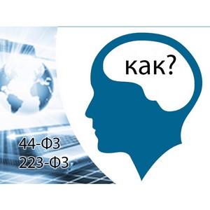 Каких знаний не хватает участникам электронных закупок?