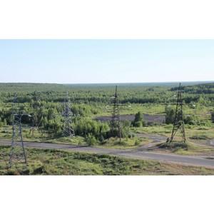 В Год экологии МРСК Центра и Приволжья направит на природоохранные мероприятия более 4 млрд рублей