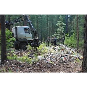 Активисты ОНФ ликвидировали несанкционированные свалки в городском лесу Кургана
