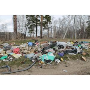 Активисты ОНФ продолжают реализацию проекта Народного фронта «Генеральная уборка»