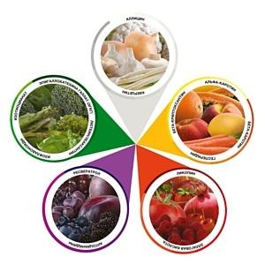 Концепция «Цвета твоего питания»: секреты сбалансированного питания и здоровья
