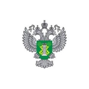 Участие в заседании Совета при представителе Президента РФ в УРФО