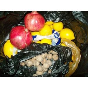Уничтожено 114,5 кг запрещенной продукции растительного происхождения