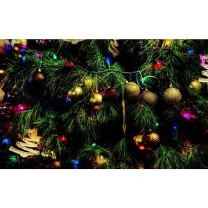 Более 5,5 тысяч новогодних подарков получили дети в этом году от  Группы компаний Талтэк