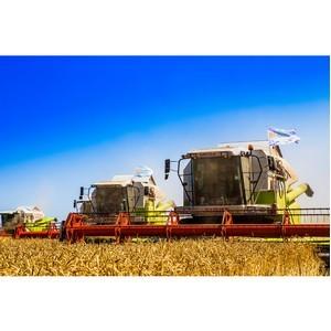 """Холдинг """"Солнечные продукты"""" увеличил урожайность пшеницы"""