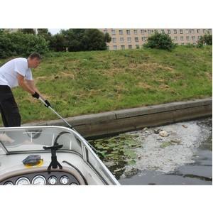 Проект ОНФ «Генеральная уборка» вскрыл проблему плавучих свалок в реках и каналах Петербурга