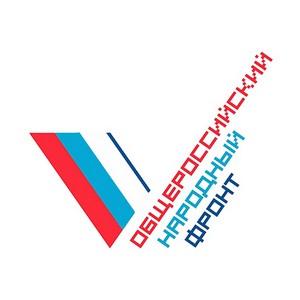 В Петербурге ОНФ запустил «горячую линию» для приема сообщений о фактах завышения цен на топливо