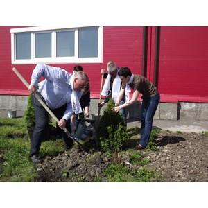 Юные миллеровцы заботятся об экологии города