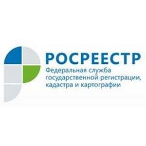 Краевой Росреестр провел экскурсию для учащихся Ильинской средней школы