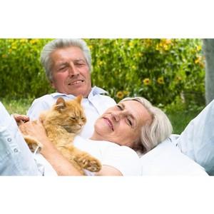 Новые решения – стимулирование общения людей с животными