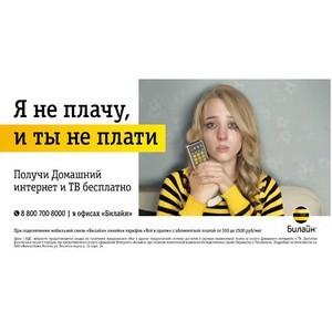 Агентство Contrapunto сделало хит группировки «Ленинград» основой рекламной кампании «Билайн»