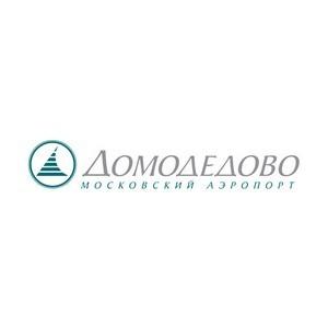 Аэропорт Домодедово отобрал кандидатов на ярмарке вакансий Москвы