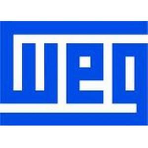 WEG может принести в Россию свои технологии для создания электромобилей