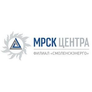 Смоленскэнерго в текущем году уже инвестировало в развитие сетей региона 360 млн рублей