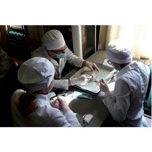 Учащиеся КФУ стали победителями VII Республиканской студенческой олимпиады по хирургии