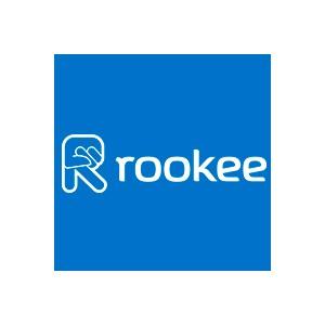 Rookee на конференции Digital оттепель