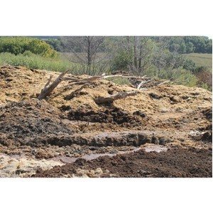 Активисты ОНФ обеспокоены экологический ситуацией в двух селах Хохольского района