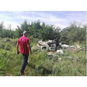 ¬олгоградские активисты ќЌ' вы¤вили нарушени¤ в экологическом состо¤нии ¬орошиловского лесничества