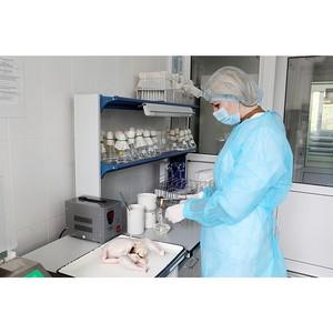 Об обнаружении антибиотиков в мясе птицы и говядине из двух регионов