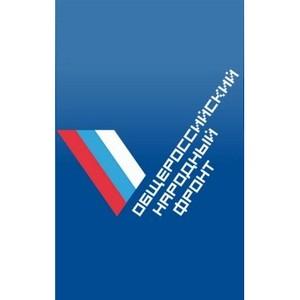 Представители ОНФ в Мурманской области обсудили перспективы развития моногорода Оленегорска