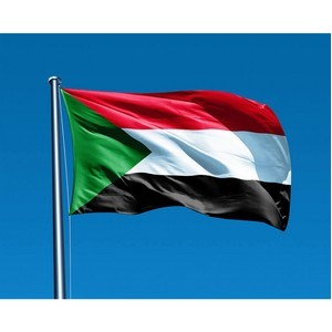 Южный Судан закроет посольства в некоторых странах из-за экономического кризиса