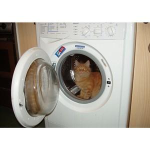 Если двери стиральной машины не открываются