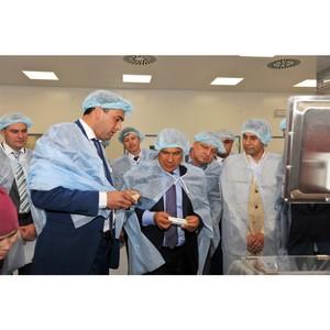 Ученые КФУ разрабатывают инновационный противогрибковый препарат