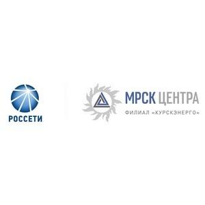 Руководитель Курскэнерго проинспектировал работу бригад на учениях энергетиков в Тверской области