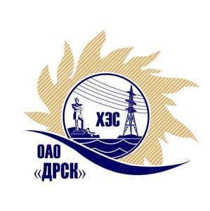 Ученики школы Хабаровска получили благодарность от «Хабаровских электрических сетей»