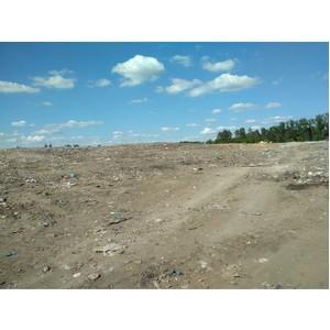 После сигнала ОНФ администрация Калачеевского района очистила от мусора территории у полигонов ТКО