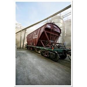Два из трех цементовозов на полигоне СКЖД — собственности ПГК