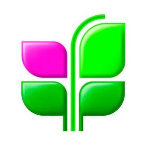 ƒол¤ Ђ–енессанс редитї на рынке POS-кредитовани¤ превысила 10%