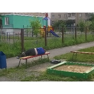 """јктивисты ќЌ' проверили состо¤ние детских площадок в """"ел¤бинской области"""