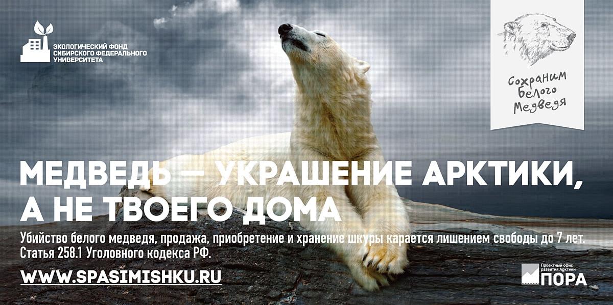 """Экофонд СФУ запускает кампанию """"Сохраним белого медведя"""""""