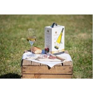 Smurfit Kappa сообщила о росте спроса на вино в упаковке Bag-in-Box