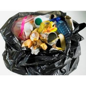 SOS! Планета задыхается от пищевого мусора
