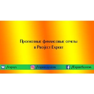 Прогнозные финансовые отчеты в Project Expert
