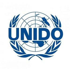 Россия представила ЮНИДО свой опыт и проекты по расширению участия женщин в экономике