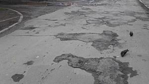 Эксперты ОНФ выявили значительные нарушения при ремонте дорог в Челябинске