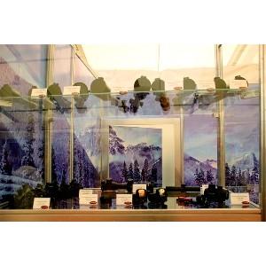 «Швабе» продемонстрировал свою продукцию в Калининграде