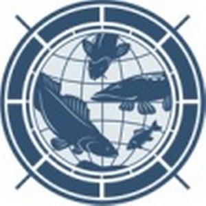 В «Рыболовной Панораме» появились спиннинги Apia