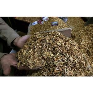 Лаффер презентовал пособие по международному налогообложению в табачной отрасли