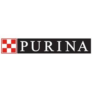 Мэил.ру Group совместно с Purina запускает медиапроект о домашних животных