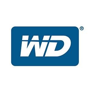 WD: итоги 2012 финансового года