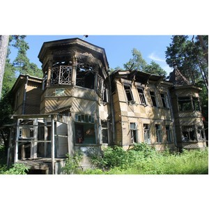 Активисты ОНФ выявили свалки на территории объектов культурного наследия в Санкт-Петербурге