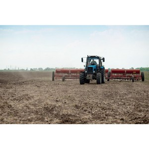 «Солнечные продукты» планируют увеличить площадь посевов на 22%